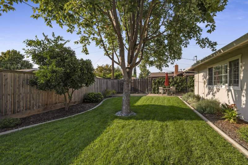 Large-lawn-and-shade