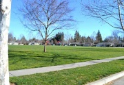Amber Grove Park, Chico California