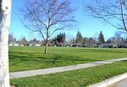 Amber Grove Park, Chico California