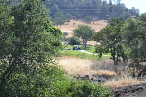 Canyon Oaks Golf Course action